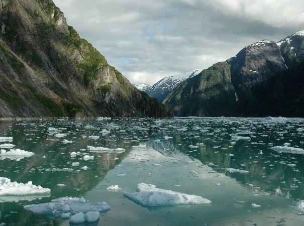 Isflak på Tracy Arm Fjord, Alaska. I løpet av reisen vil den enorme villmarken i Alaska sakte men sikkert avsløre sin magi – store, åpne områder og frodige regnskoger, dype fjorder og taggete isbreer skaper en uforglemmelig ekspedisjon i Alaska.