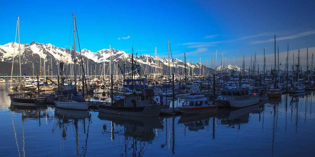 Seward_area_©Murray Foubister-CC BY-SA 2_0_1200x600.jpg