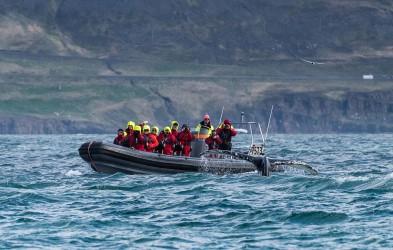Ekspedisjon rundt Island - 11 dager | Sommer 2020 | Hurtigruten