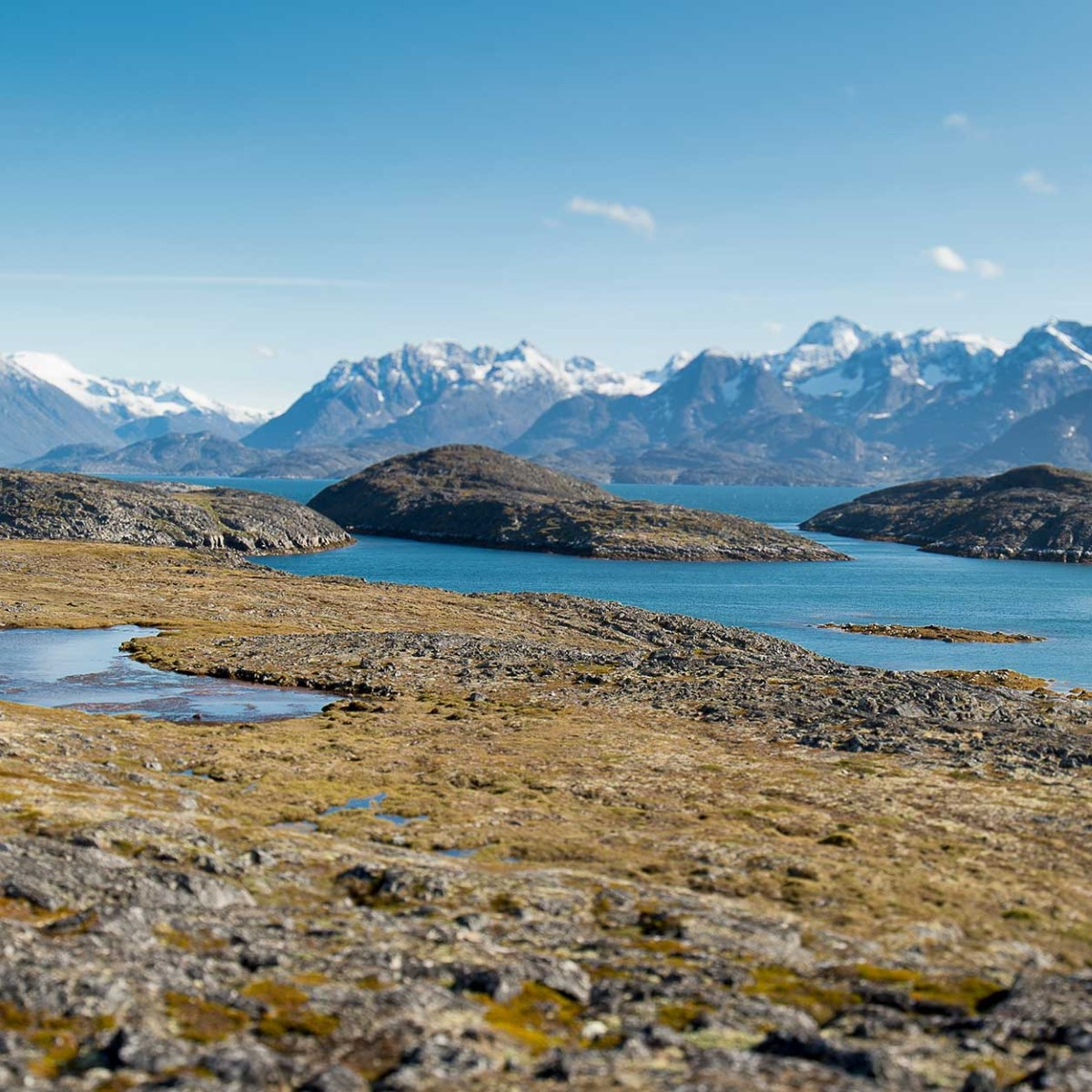 Island og Grønland - På vikingferd (17 dager) | Hurtigruten
