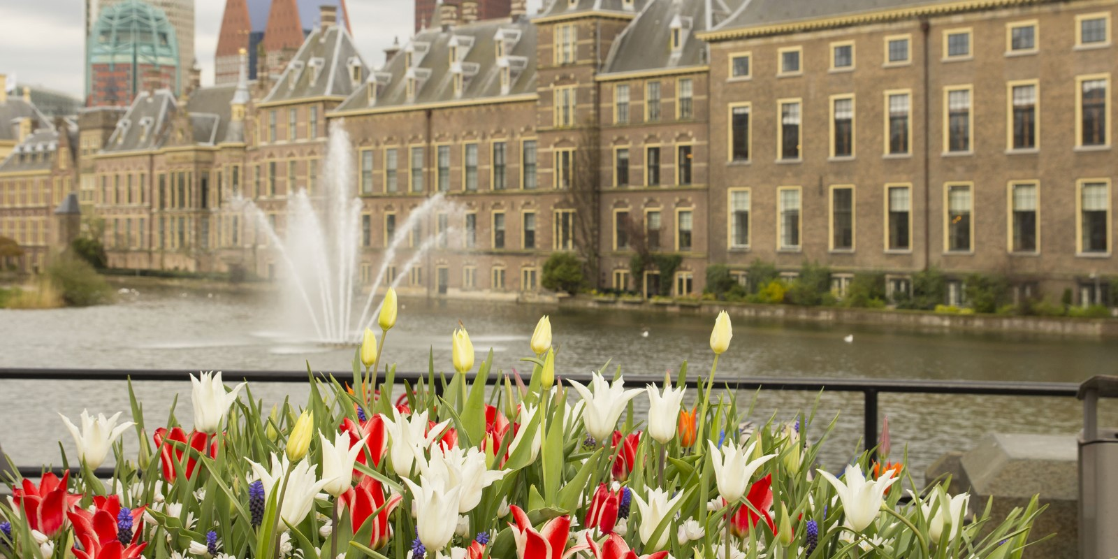 Carlos-Amarillo-Shutterstock_Guided-tour-The-Hague_299631029_2500x1250.jpg