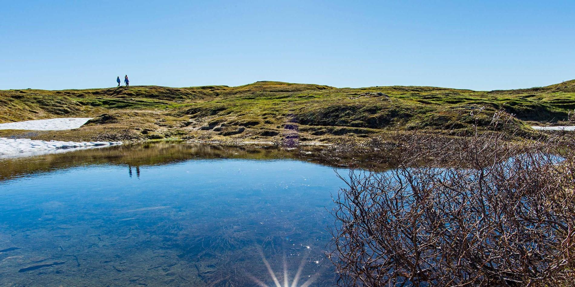 Fotturer i vakre norske landskap